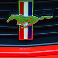 Boss 302 Ford Mustang Emblem by Mike Martin