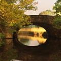 Boston Bridge Reflections by Lauri Novak