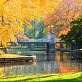 Fall Season At Boston Common by Louis Rivera
