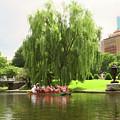 Boston Garden Swan Boat by Sue Collura