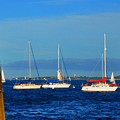 Boston Harbor Picture Perfect by Andrew Dinh