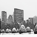 Boston Nor'easter by Juergen Roth