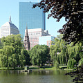 Boston Public Garden by Kathy Schumann