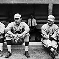 Boston Red Sox, C1916 by Granger