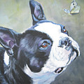 boston Terrier butterfly by Lee Ann Shepard