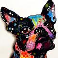 Boston Terrier II by Dean Russo