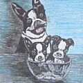 Boston Terrier Mom And Pups by Kathy Marrs Chandler