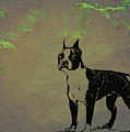 Boston Terrier  by Movie Poster Prints