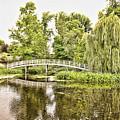 Botanical Bridge - Van Gogh by Anthony Baatz