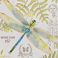 Botanical Dragonfly-jp3418b by Jean Plout