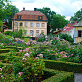 Botanical Gardens - Stockholm Sweden by Just Eclectic