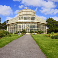 Botanical House by Martina Fagan
