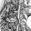 Botanical Series by Tamara Zemlyanaya