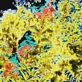 Botanicals  by Peggy Leyva Conley