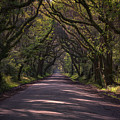 Botany Bay Road by Rick Berk