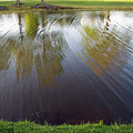 Grass On Both Sides With Water Between by Cora Wandel