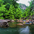 Bottom Of Tallulah Gorge by Barbara Bowen