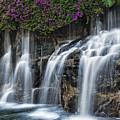 Bougainvillea Blooms Above Wailea Falls.  by Larry  Geddis