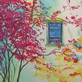 Bouganvilla And Blue Shutter by Lizzy Forrester