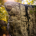 Boulder At Moss Rock Preserve by Parker Cunningham