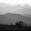 Boulder County Foothills To The Rockies Bw by James BO Insogna