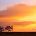 Boulder County Sunrise by James BO  Insogna