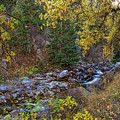 Boulder Creek Autumn View  by James BO Insogna
