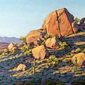 Boulders By Pinnacle Peak Mountain by Jeff Franco