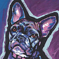 Bouledogue Baby by Lea S