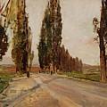 Boulevard Of Poplars Near Plankenberg by Emil Jakob