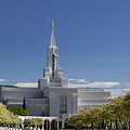Bountiful Utah Temple In Spring by Richard Lynch