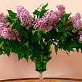 Bouquet For My Grandmother by Regina Donetskaya