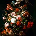 Bouquet No. 11 by Boris Draschoff