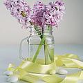 Bouquet Of Hyacinth by Kira Yan