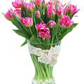 Vase Of Tulips by Anastasy Yarmolovich