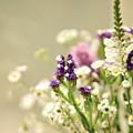 Bouquet Of Wildflowers by Lil Kin