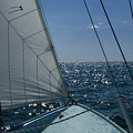 Bow Of A Sailboat Under Sail by Todd Gipstein