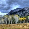 Bow Valley Parkway Banff National Park Alberta Canada IIi by Wayne Moran
