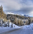 Bow Valley Parkway Winter Scenic by Adam Jewell