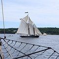 Bowditch Under Full Sail by Doug Mills