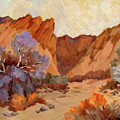 Box Canyon by Diane McClary