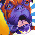 Boxer - Chance by Alicia VanNoy Call