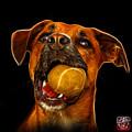 Boxer Mix Dog Art - 8173 - Bb by James Ahn