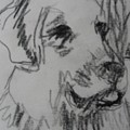 Boy And Dog Under Sky by Melody Horton Karandjeff