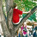 Boy In A Tree by John Haldane