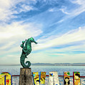 Boy On The Seahorse by Paul LeSage