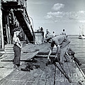 Boy Watching Fisherman Unload Lobsters by H Armstrong Roberts and ClassicStock