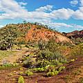 Bracchina Gorge Flinders Ranges South Australia by Bill Robinson