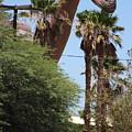 Brachiosaurus Running Through Cabazon by Colleen Cornelius
