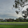 Bradman Oval Bowral by Shona Murray